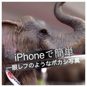 iPhoneで簡単に一眼レフみたいなボカシ写真が撮れる「Tadaa SLR」が期間限定無料