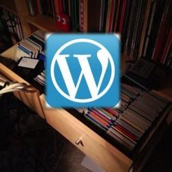 ブログの記事数が増えるってことはPVやアクセスアップへの引き出しが増えるっていうことだねって改めて実感