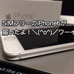 iPhone6 SIMロックフリーが届いた。案内よりもかなり納期が早くてビックリ