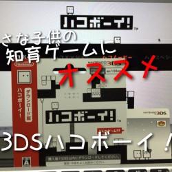 小学生くらいの小さい子供におすすめな3DS知育パズルアクションゲーム「ハコボーイ!」630円だよ。安い!